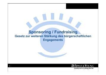 Fritz/Heidler - Sponsoring - Hochschulkurs