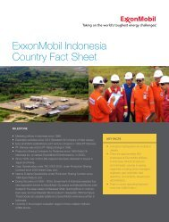 ExxonMobil Indonesia Country Fact Sheet