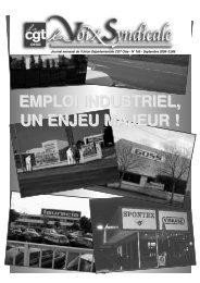 mouvement social d'avril et mai 2009 dans les ... - CGT L'Oise