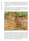Zecken - Borreliose - FSME ...vermeiden - erkennen - bei Crossmed - Seite 6