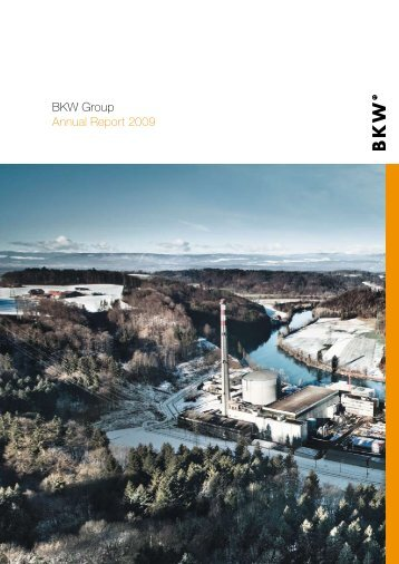 BKW Group Annual Report 2009