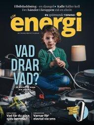 DinEnergi nummer 1 2021