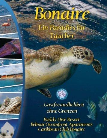 Ein Paradies für Taucher - Buddy Dive Resort