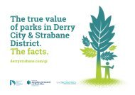 The true value of parks in Derry City & Strabane District: The facts