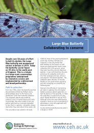 Large Blue Butterfly: Collaborating to Conserve - Centre for Ecology ...