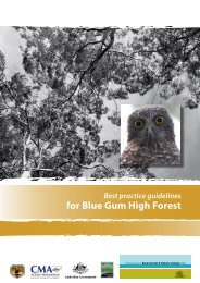 Best practice guidelines for Blue Gum High Forest - Department of ...
