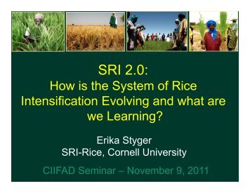SRI 2.0: - Cornell International Institute for Food, Agriculture and ...