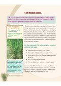 SRI Method of Paddy Cultivation - WASSAN - Page 4