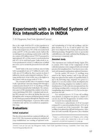 Experiments with a Modified System of Rice Intensification - Cornell ...