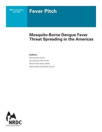 Mosquito-Born Dengue Fever Threat Spreading in the Americas