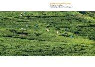 Singharaja Garden ECO-Lodge Sri Lanka genießen, nachhaltig und ...