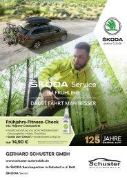 Schuster Automobile - Aktionen