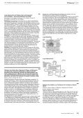 Suppl 2 - Primary Care - Page 3