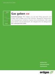Jahresbericht VSG 2004 - Erdgas