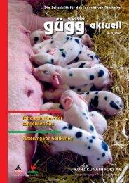 Fütterung von Galtkühen Futteraufnahme der ... - Kunz Kunath AG
