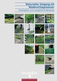 Naturnaher Umgang mit Niederschlagswasser - Ministerium für ...