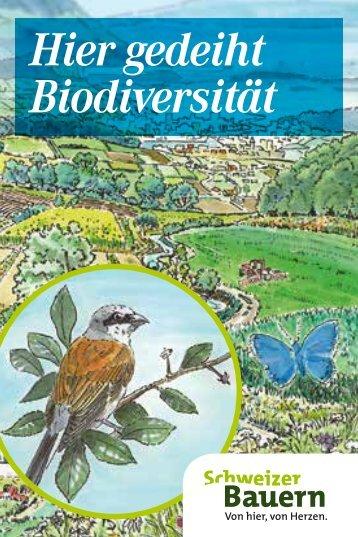 Minifaltbroschüre Biodiversität