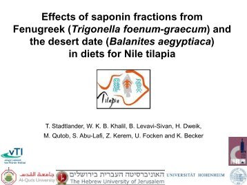Effects Of Saponin Fractions From Fenugreek