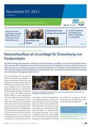 Newsletter Januar 2012 - Initiative Regionalmanagement Region ...