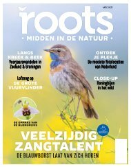 Roots editie 5 - 2021 - inkijkexemplaar