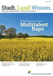 Nachhaltig, nahrhaft & gesund - das Multitalent Raps