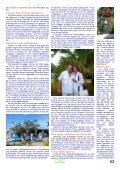 Muskel- und Stoffwechsel- Konstitution Kai Hoffmann - Holistic ... - Page 6
