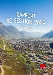 Rapport de gestion annexes 2020