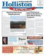 Holliston November 2020