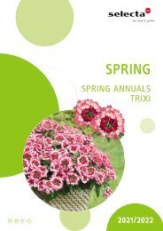 Selecta Spring Annuals and Trixi 21-22 North Europe