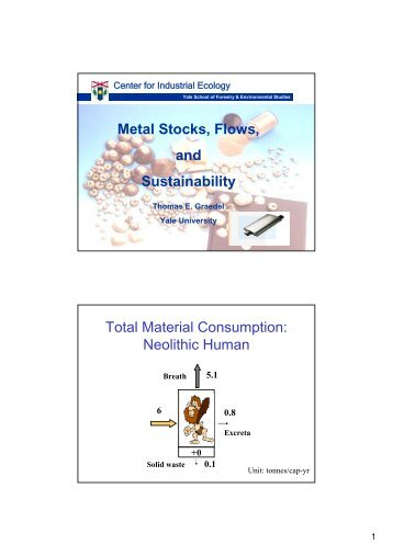 Metal Stocks, Flows, and Sustainability Total Material Consumption ...