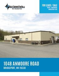 1048 Anmoore Marketing Flyer