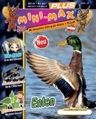 MINI-MAX-PLUS-000-April 2021