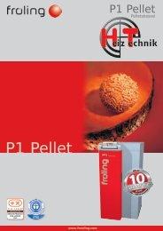 Prospekt Fröling P1 Pellet DE