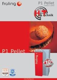 Brochure Fröling P1 Pellet IT
