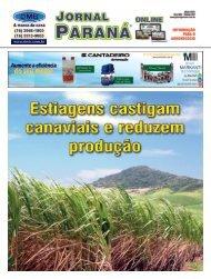 Jornal Paraná Maio 2021