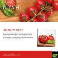 Tomaten für des Gemüsegartens