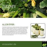 Zucchini für des Gemüsegartens