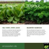Feldsalat und Petersilie für des Gemüsegartens