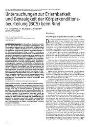 beurteilung (BCS) beim Rind