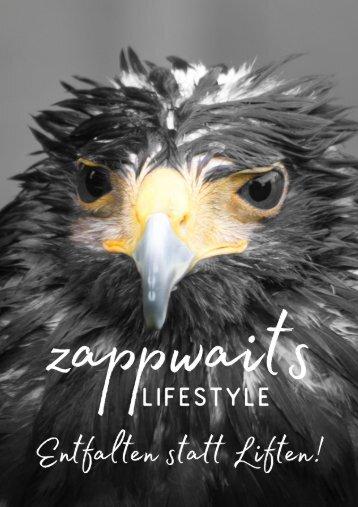 zappwaits KATALOG 3