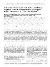Expression Patterns of a Novel AtCHX Gene ... - Plant Physiology