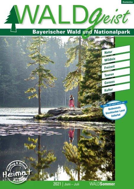 Waldgeist Sommer 2021