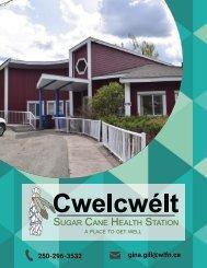 Health Station Booklet