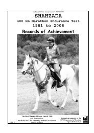 HORSE HONOUR ROLL