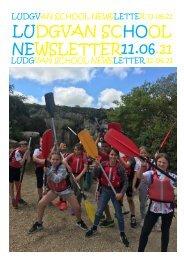 Newsletter 21 11.06.21