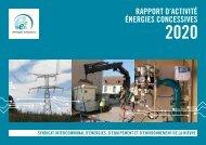 SIEEEN - Rapport d'activité énergies concessives 2020