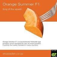 Leaflet Orange Summer F1