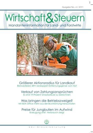 Wirtschaft & Steuern 04-2011 - bbv-Beratungsdienst GmbH