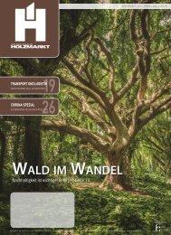 Holzmarkt 2020/03