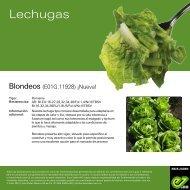 Leaflet Blondeos 2021